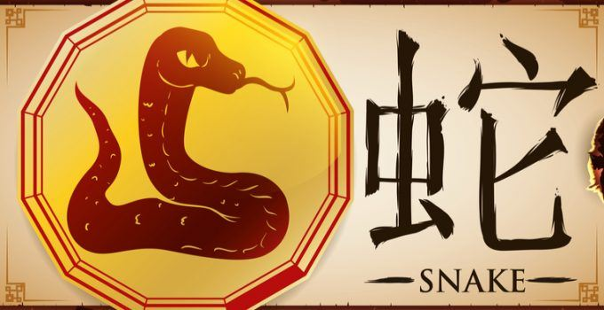 signo de serpente no horóscopo chinês