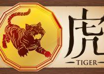 signo de tigre no horóscopo chinês